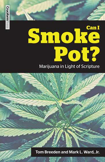 Cover of the book Can I smoke Pot?