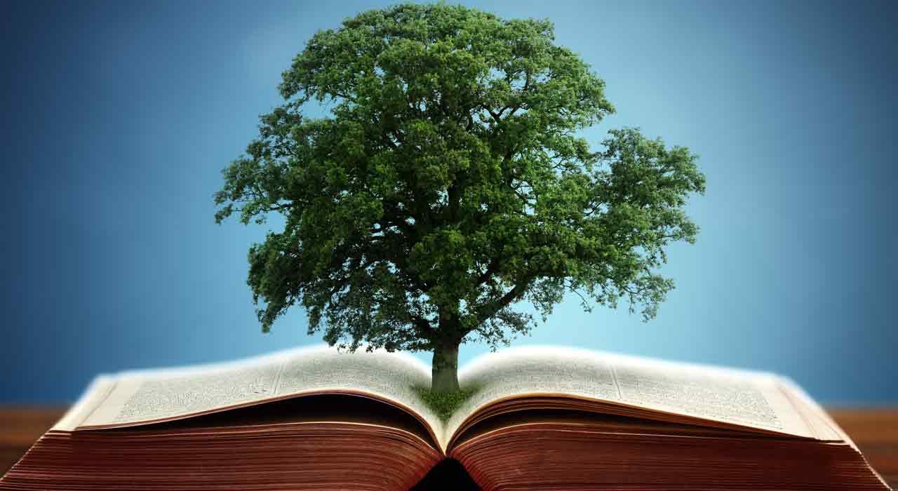 фотографии на тему знания и мудрости часто случается